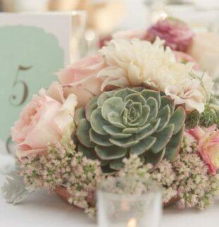 Fresh Flower Ideas for 2012