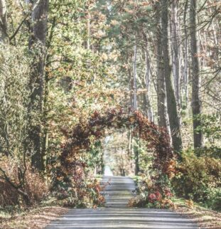How To Create Your Dream Outdoor Wedding