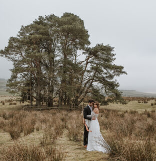 She's So Golden at Woodhill By Little Miss Boyco